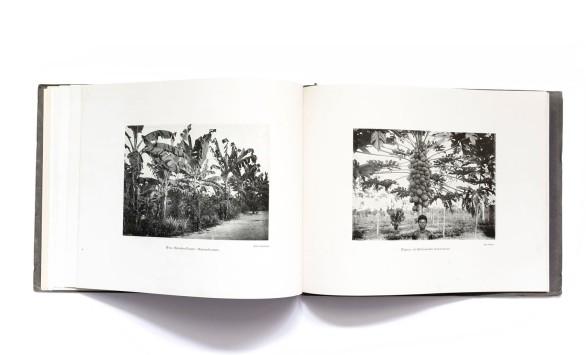 1920_Kijkjes_in_Belgisch_Kongo_forweb008