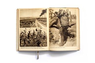 1950_Belgicke_Kongo_forweb005
