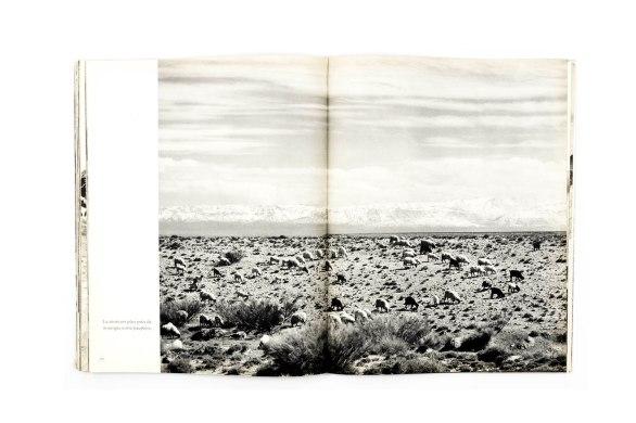1954_Maroc_terre_et_ciel_forweb011