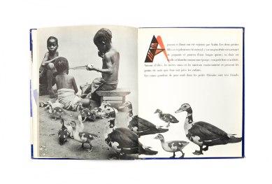 1955_Agossou_forweb008