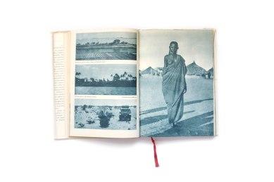 1957_Africkou_Divocinou_forweb003