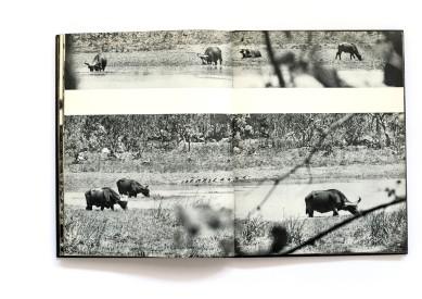 1958_Bagara_forweb029