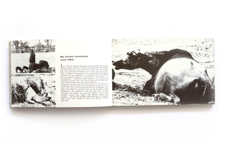 1966_Le_Grand_Barrage-sur_le_nil_forweb009