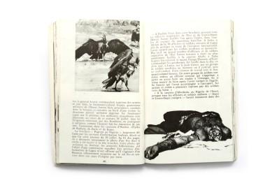1968_La_Mort_du_Biafra_007