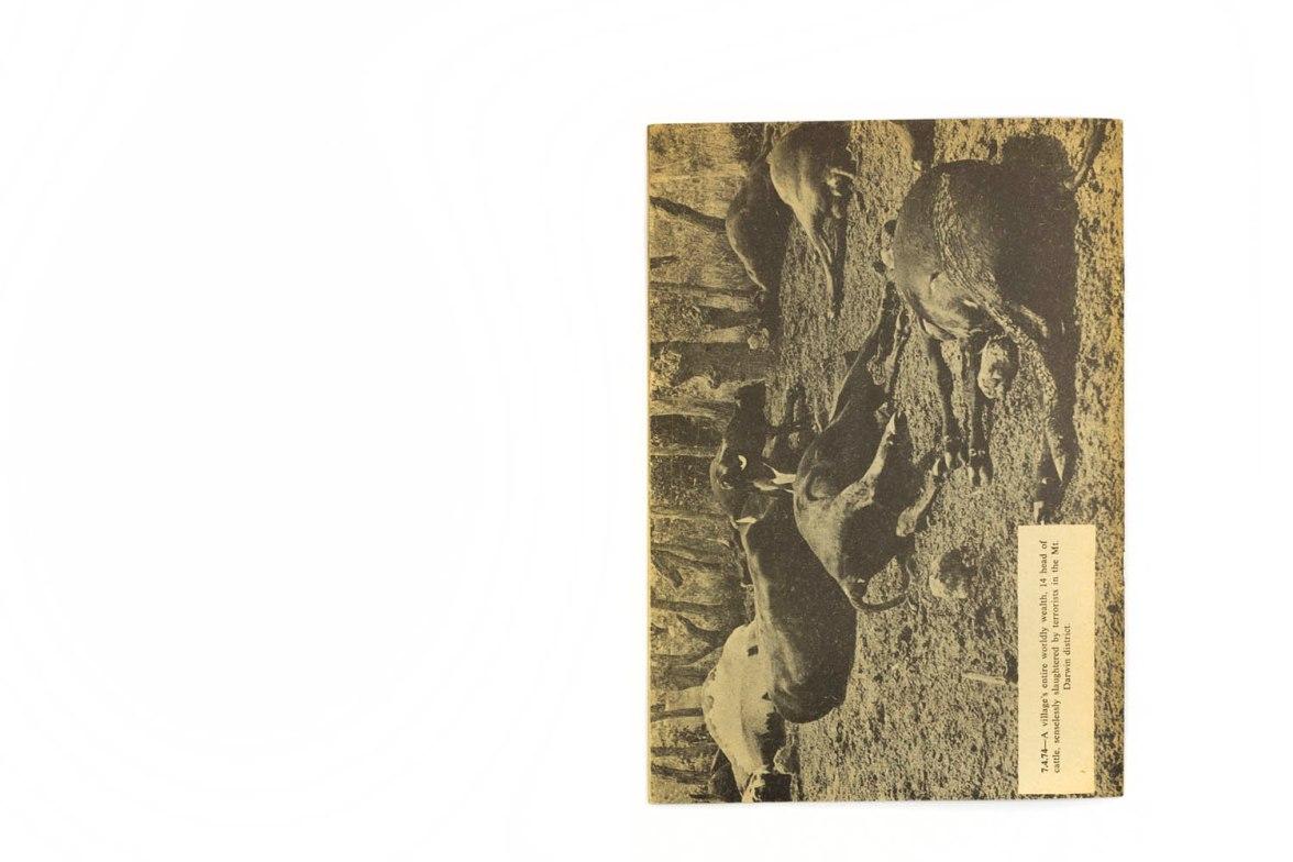 1974_Anatomy_of_terror_forweb012