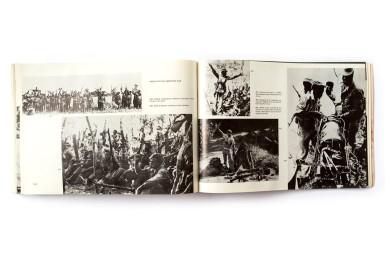 1982_Zimbabwe_epic_forweb008