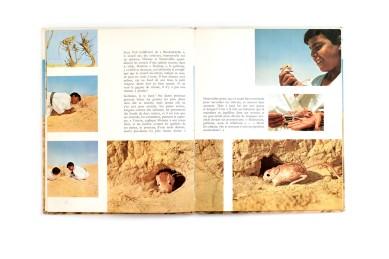 Title: Slimane et les animaux du desert Photographer(s):Freddy Tondeur Designer(s): J.D. Lortsch Writer(s): – Publisher: Éditions Nathan, Paris (?) 1972 Pages: 32 Language:French ISBN: - Dimensions:21.5 x 26.5 cm Edition: Country:Tunesia and Libya