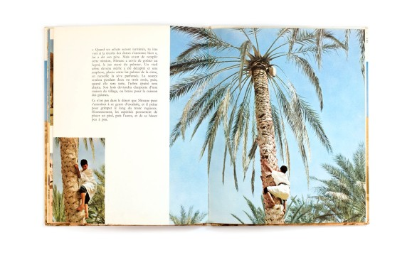 Title: Slimane et les animaux du desert Photographer(s): Freddy Tondeur Designer(s): J.D. Lortsch Writer(s): – Publisher: Éditions Nathan, Paris (?) 1972 Pages: 32 Language: French ISBN: - Dimensions: 21.5 x 26.5 cm Edition: Country: Tunesia and Libya
