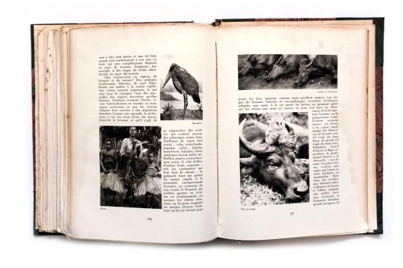 1929_Le_Miroir_du_Congo_Belge_Tome2_018