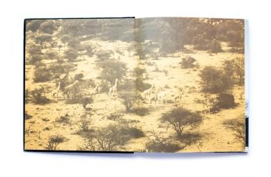 1983_Am_horn_von_afrika_002