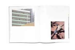 Title: Parasomnia Photographer(s): Viviane Sassen Designer(s): Sybren Kuiper Writer(s):Moses Isegawa Publisher: Prestel, München 2011 Pages:104 pages Language:English ISBN: 978-3791345215 Dimensions:31 x 25 cm Edition: Country:Various countries